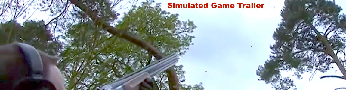 simulated-game